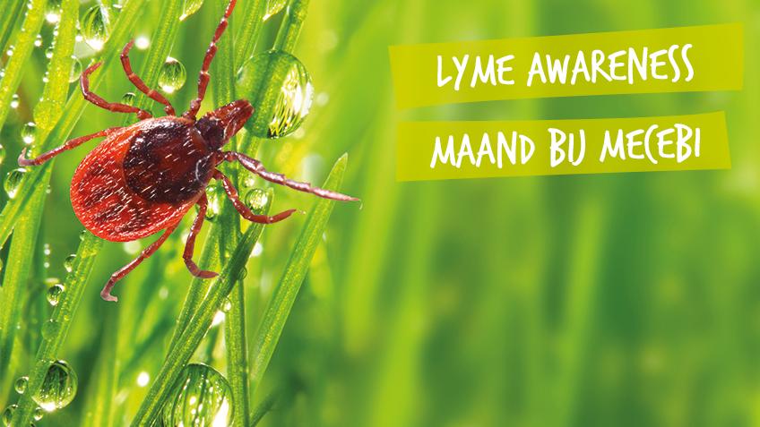 Lyme awareness maand bij MeCeBi